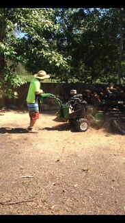 Stump grinding from $175 per day ph:0 Nerang Gold Coast West Preview
