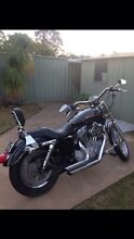 Harley Davidson sporty sale/ trade/ swap. Camden Camden Area Preview