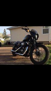 2008 Harley 1200 nightster