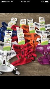 Awareness collars, leashes and harnesses