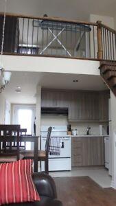 Super loft 16 pieds de plafond avec terrasse sur le toit et spa!