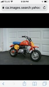 WANTED.  Honda Z50