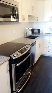 Brand new fully furnished and decorated luxury townhome