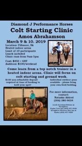 Colt Starting Clinic with Amos Abrahamson