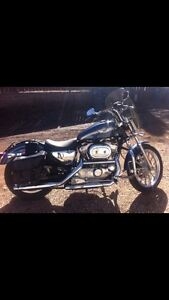 2003. Harley Davidson Sportster.   Special Edition