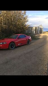 2003 FORD MUSTANG REDUCED!!