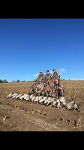 Fully Guided Waterfowl Hunts 25 Years In Business