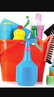 Reliable home cleaners