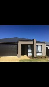Master room available for rent Banksia Grove Wanneroo Area Preview