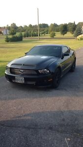 2011 Ford Mustang for sale with over 8000$ in mods!