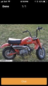 Honda Z50   Wanted