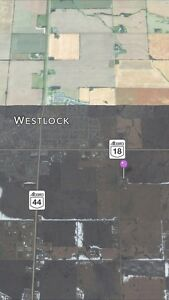 Shop and 6.8 acres for rent (Westlock) Edmonton Edmonton Area image 7