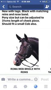 Webbing bridle /reins Moore Somerset Area Preview