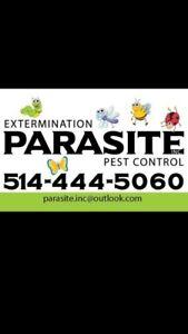 Extermination exterminateur rat souris