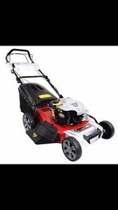 Lawn mowing grass cut Arncliffe Rockdale Area Preview