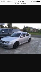 Looking for a tdi Jetta