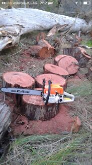 Customers are Raving about these BRAND NEW CHAINSAWS