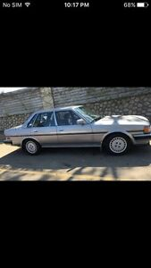 Looking for mint Cressida