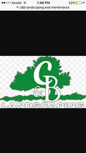 C & B Landscaping and maintenance