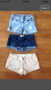 American eagle, hollister shorts