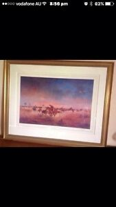 Large signed, framed, limited edition Darcy Doyle prints  - $225 (neg) Mount Pleasant Melville Area Preview