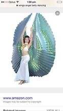 Wanted - belly dancing wings Middlemount Isaac Area Preview