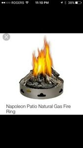 Napoleon patio flame