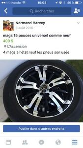 Mags universelle 15 pouces