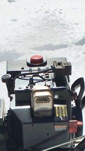 Snowblower engine