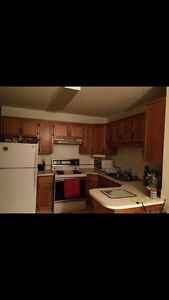 Room for rent in Barrhead