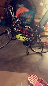 Southern Star mountain bike for sale Cromer Manly Area Preview
