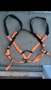 Safety harness / lanyard