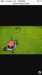 Lawn mowing and gardening services same day Reservoir Darebin Area Preview