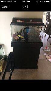 10 gallon fish tank with everything you need