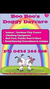 Doggy Day Care Landsdale Wanneroo Area Preview