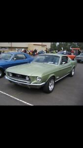 Mustang fasrback