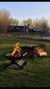 Best Burning Dry Pine Campfire Firewood XXL Bags $25