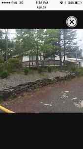 Cabin for rent in Deer Park, Salmonier Line!
