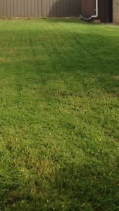 Lawn mowing clients for sale $6500 Port Noarlunga Morphett Vale Area Preview