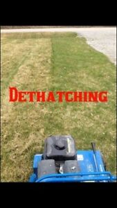 Spring Lawn Care & Repairs Free Quotes