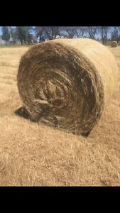 Round Hay Bales 5x4 for sale Pakenham South Area Oakleigh Monash Area Preview