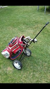 Full set of clubs and bag Revesby Heights Bankstown Area Preview