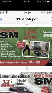 tonte de pelouse gazon hebdomadaire nettoyage inclus 15$