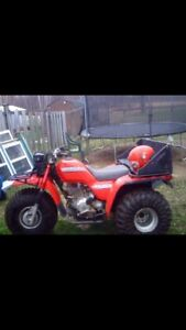 Looking for a Honda big red 250