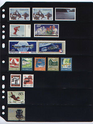 **ANCHOR 60 New Stock Pages 7S (7-rows) Stock Sheets/ Double Sided.FREE SHIPPING