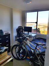 SUNNY BRIGHT APARTMENT FOR RENT IN WAVERTON Waverton North Sydney Area Preview