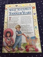 What To Expect Toddler Years Endeavour Hills Casey Area Preview