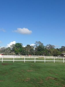 Agistment Burpengary Caboolture Area Preview