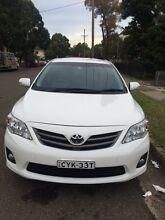 Toyota Corolla Holroyd Parramatta Area Preview