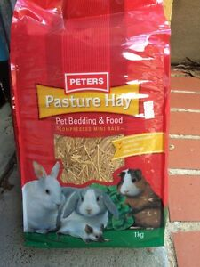 Pasture Hay Bedding and Food Springfield Gosford Area Preview